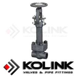 Forged Steel Gate Valve Extended